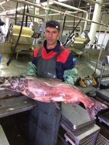 А.Кутовой с рыбой