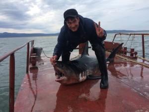 С акулой